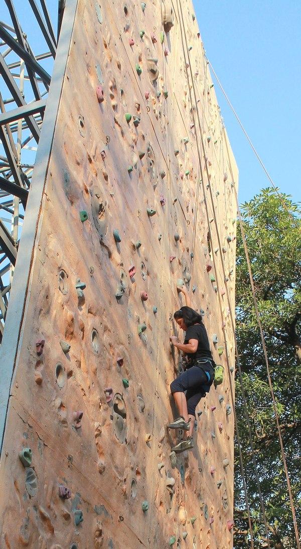 Artificial Rock Wall Climbing
