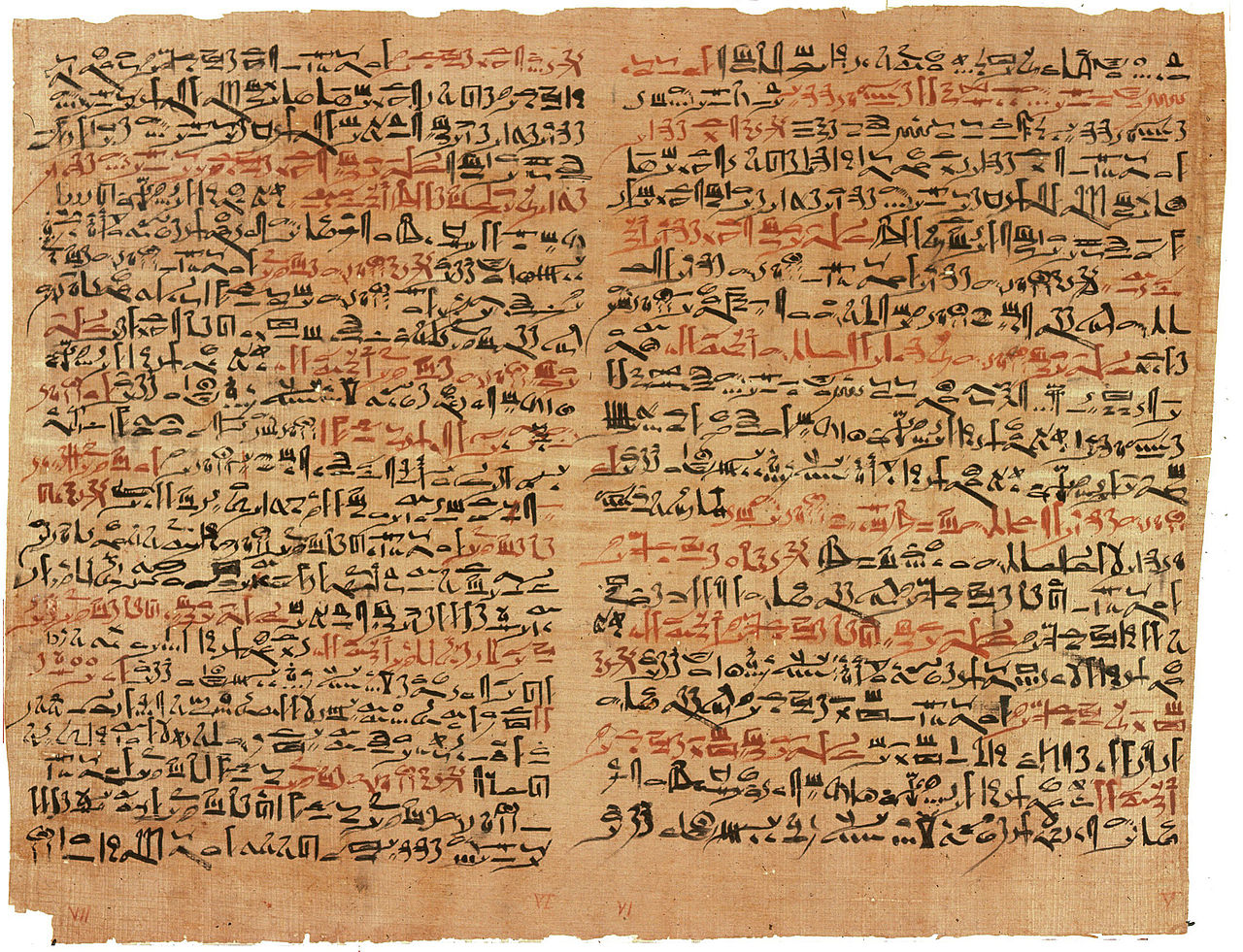 The 'Edwin Smith Papyrus', an ancient Egyptian text on the surgical management of trauma.