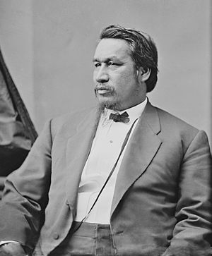 English: Ely S. Parker, Native American civil ...