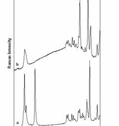 wiring diagram 2003 kium spectra g [ 1200 x 1683 Pixel ]