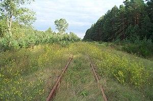 The rails at Treblinka.