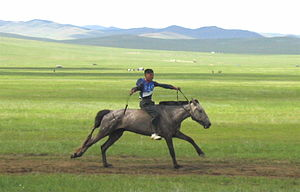 Naadam rider 1