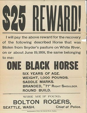 Poster for a missing horse, Seattle, Washingto...