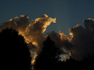 Italiano: Nubi al tramonto. English: Clouds at...