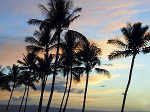 Deutsch: Sonnenuntergang bei Kihei (Maui/Hawaii)