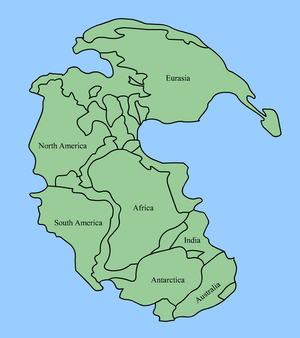 Once there was one big continent -- Pangaea, which later split into several ones we know today. Image from : wikipedia.org