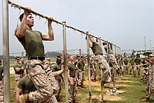 pull up exercise wikipedia