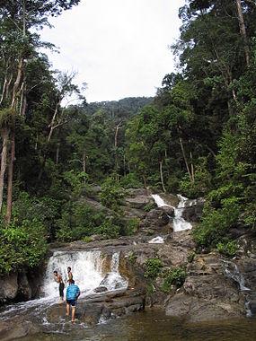 Gunung Ledang waterfall.jpg