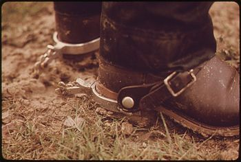 SPURS OF A RANCH HAND WHO WORKS IN THE AREA OF...
