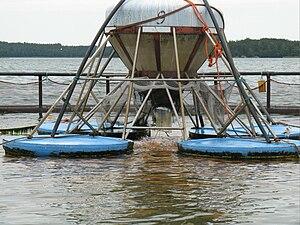 Salmon farm in the archipelago of Finland
