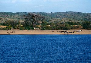 Lake malawi mozambico coast