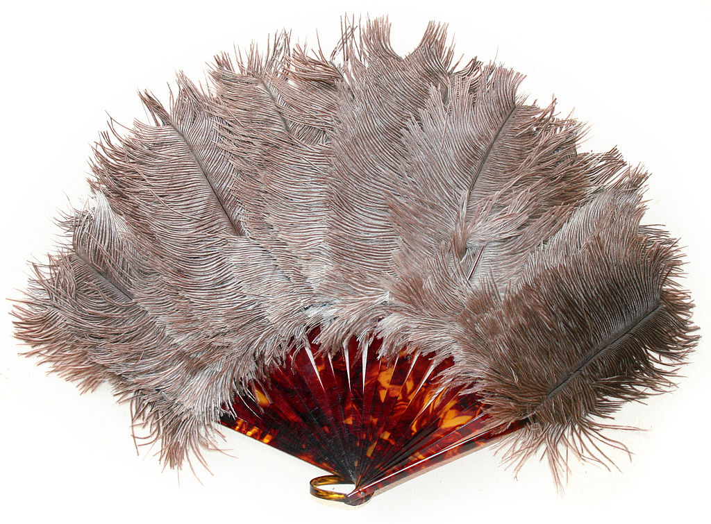 FileOstrich feather art deco 1920s yearsjpg