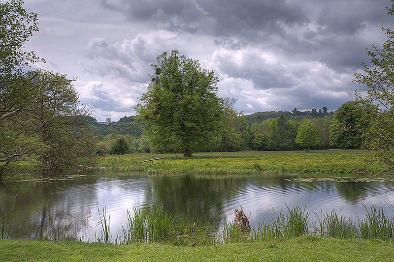 Runnymede, Magna Carta Isle, photo by Wyrdlight, Antony McCallum, 2008 (Wikimedia)