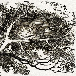 Cheshire Cat vanishing (detail)