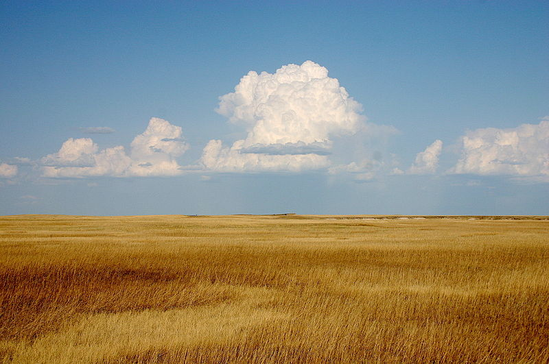 File:Cumulus Clouds over Yellow Prairie2.jpg