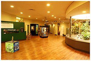 Belle Isle Nature Center Interior. Detroit, MI.