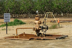 English: A natural gas well (produces gas only...
