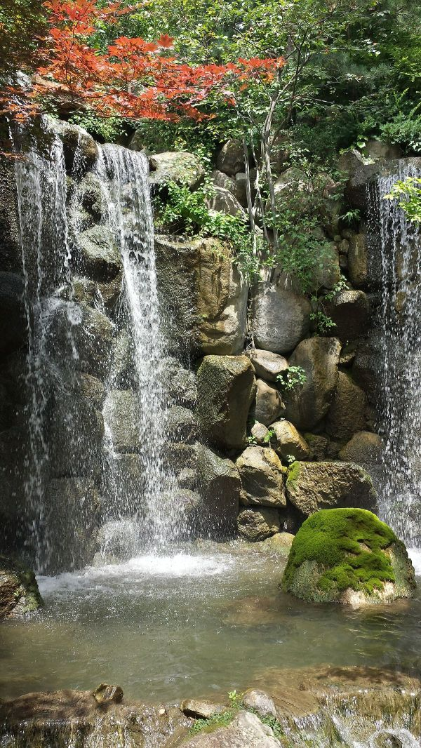 anderson japanese gardens - wikipedia