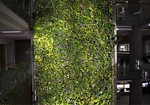 living room picture wall ideas on how to arrange furniture green - wikipedia