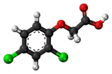 Ball-and-stick model of 2,4-dichlorophenoxyacetic acid