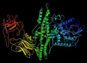 Crystal structure of Botulinum Neurotoxin Sero...