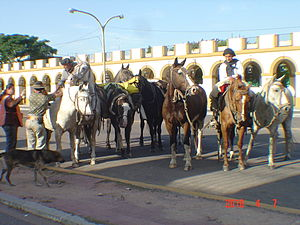 Gauchos with horses