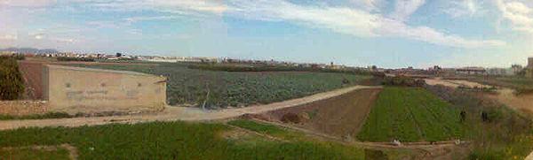 Terrenos correspondientes a los términos de Burjasot, Rocafort, Moncada, y Alboraya.