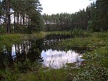 Geografia della Bielorussia  Wikipedia