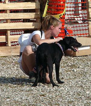 Gonzales, LA, September 16, 2005 - A rescued d...