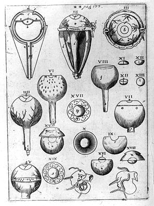 A plate from Astronomiae Pars Optica, illustra...