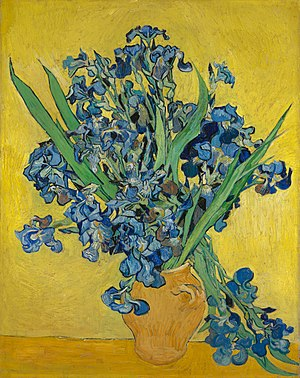 Irises (1890) by Vincent van Gogh.