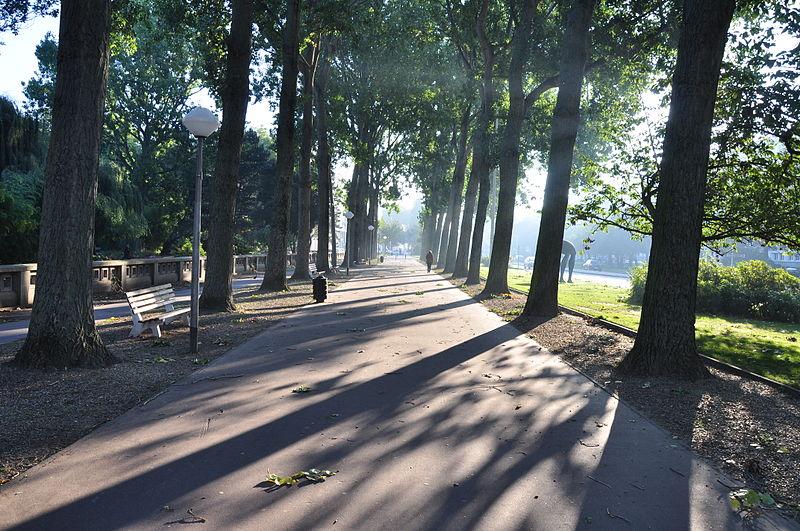 File:Avenue Foch arbres Le Havre ombres 2.JPG
