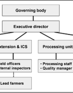 Figure example of an organisational structure organic business specific functions like processing and trade could also be outsourced guide planning managing your rh enbooks
