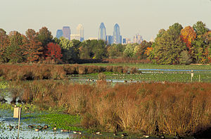 Philadelphia is easily visible from the refuge.
