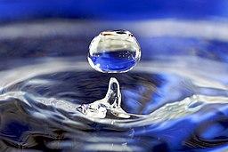 The Corner - Life through Water (2/3)