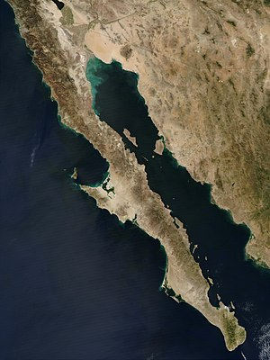 The road runs the entire length of the Baja Ca...