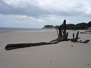 Ilha de Cotijuba - Belém do Pará