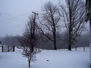 English: Snowy Day at Droop Mountain, WV