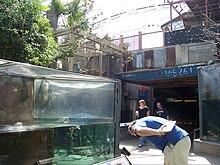 Florida Aquarium  Wikipedia