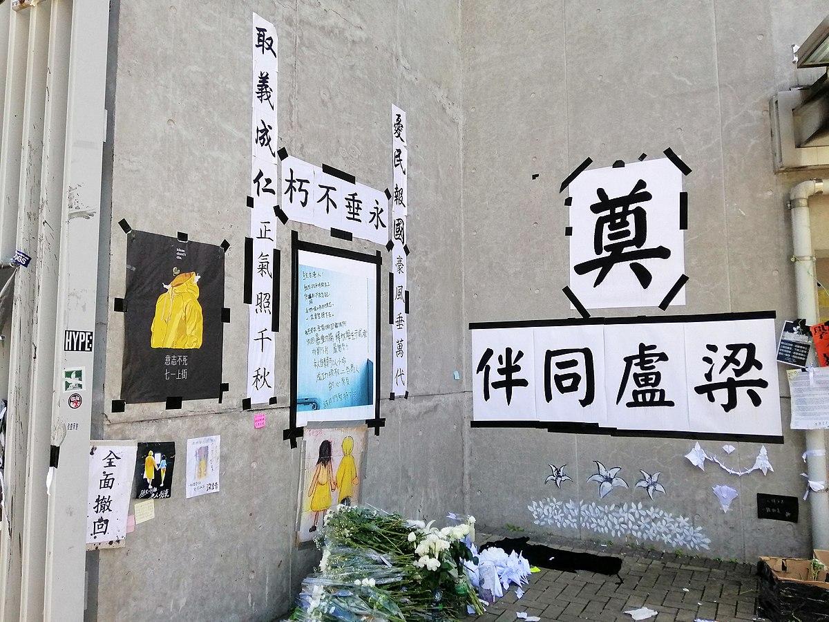 反對逃犯條例修訂草案運動相關嚴重傷亡事件 - 維基百科,自由的百科全書