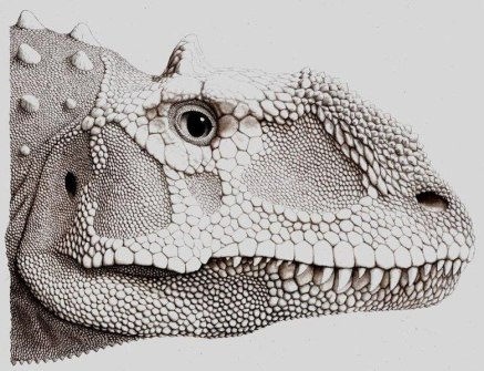 File:Majungasaurus crenatissimus.jpg