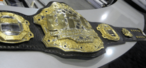 UFC Belt - Cropped from image on Flickr.