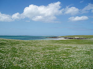 English: The Machair towards West beach, Isle ...