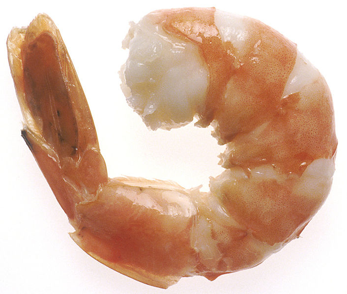 File:NCI steamed shrimp.jpg