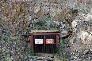The entrance to an underground gold mine in Vi...