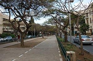 English: Bike lane on Rothschild Boulevard, Te...