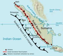 Warisan Hutan Hujan Tropis Sumatera - Wikipedia bahasa ...