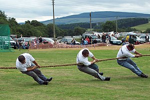 English: Tug-o-War at Kirkmichael Highland Gam...