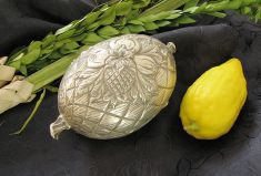 English: Etrog, silver etrog box and lulav, us...