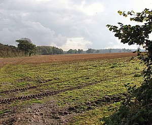 English: Southeasterly view across stubble fie...